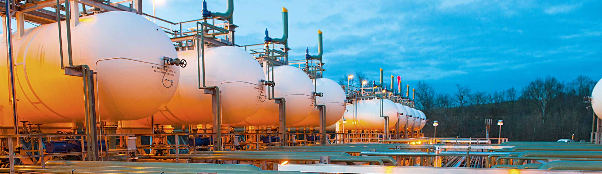 """Read more about the article Gasification """"better pathway to CCS in India"""""""