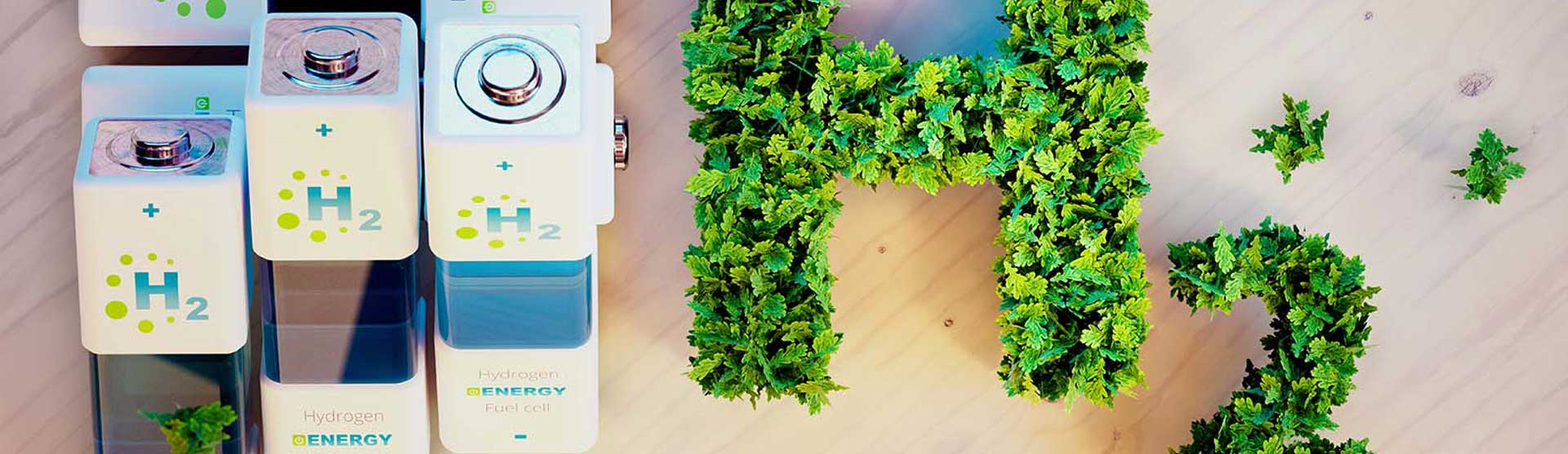Read more about the article OPINION: The making of the future hydrogen economy: Green or Blue?